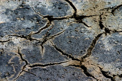 Global warming. Dried up earth, because of global warming stock photo