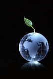 Global warming. Glassy globe with real green leaf growing from north pole Royalty Free Stock Photo