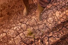 Global warming and climate change effects threat to mankind. Top view of farmer in rubber boots standing on dry land royalty free stock photo