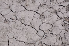Global warming concept of cracked ground Royalty Free Stock Photo