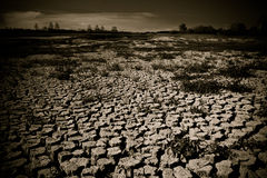 Global warming concept of cracked ground Stock Photo