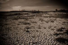Global warming concept of cracked ground Stock Images
