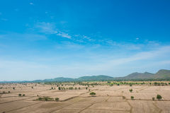 Global warming, died and cracked soil in arid season,View of the Royalty Free Stock Photography