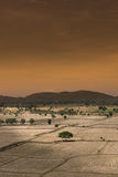 Global warming, died and cracked soil in arid season,View of the Stock Image