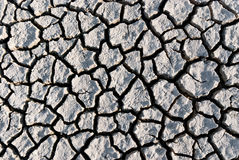 Global warming, dry cracked land stock photo