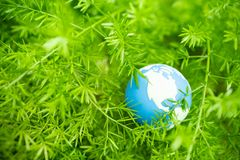 Global Warming, Environment and Ecology Concept. Close up of mini world ball on green leaf tree nature with rain drop