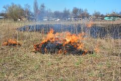 Global Warming Fueling Increased Wildfire Risks. Grass burning near village houses. Global Warming Fueling Increased Wildfire Risks. Grass burning royalty free stock photos