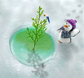Global Warming In North Pole Royalty Free Stock Photography