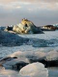 Global warming in Jokulsarlon iceberg lake Royalty Free Stock Image