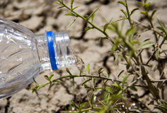 Global warming. New hope in global warming and Water Crisis concept Royalty Free Stock Image
