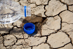 Global warming. New hope in global warming and Water Crisis concept Royalty Free Stock Photography