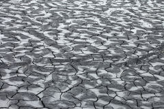 Global warming - parched earth Royalty Free Stock Images