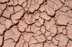 Global warming - parched earth Royalty Free Stock Photography