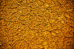 Global warming is producing heavy droughts. Texture of an arid sole Stock Image