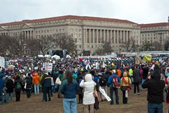 Global Warming Rally Royalty Free Stock Photos