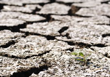 Global warming theme hot dried earth floor background Stock Photos