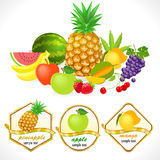 Globally available Assorted Fresh Fruits Royalty Free Stock Photography