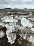 globalne ocieplenie Lodowaci floes mealtiing na plaży Atrakci turystycznej nicestwienia lodowowie Zdjęcia Royalty Free
