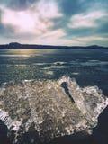 globalne ocieplenie Lodowaci floes mealtiing na plaży Atrakci turystycznej nicestwienia lodowowie Fotografia Royalty Free