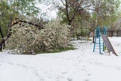 globalne ocieplenie Śnieg w lecie Zdjęcia Royalty Free