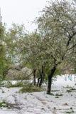 globalne ocieplenie Śnieg w lecie Zdjęcia Stock