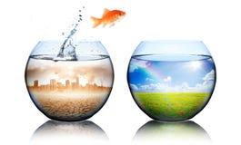 globalne ocieplenie pojęcia Obrazy Stock