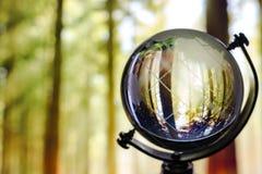 Globalnego nagrzania konserwatysta fotografia stock