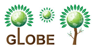 Globe. Illustration of globe on the tree Stock Images