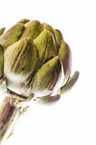 Globe artichoke Stock Photos
