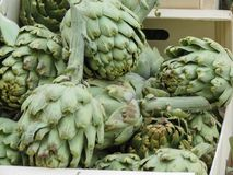 Artichoke vegetables food Royalty Free Stock Images