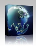 Globe Asia Pacific box package Royalty Free Stock Photos
