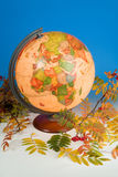 Globe And Autumn Leaves Stock Image