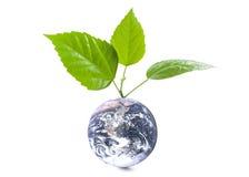Globe avec des lames Photo stock