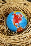 Globe in a bird's nest Royalty Free Stock Photo