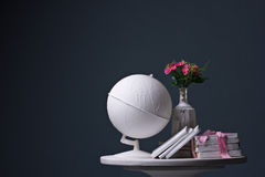 Globe, books and branch of flower Royalty Free Stock Image