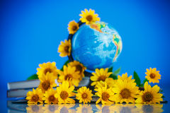 Globe with books and flowers Stock Images