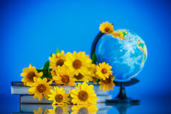 Globe with books and flowers Stock Photo