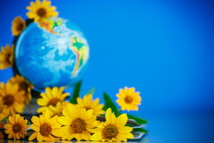 Globe with books and flowers Stock Image