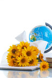 Globe with books and flowers Royalty Free Stock Images