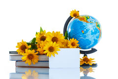Globe with books and flowers Stock Photos