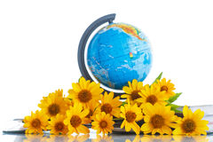 Globe with books and flowers Royalty Free Stock Photography