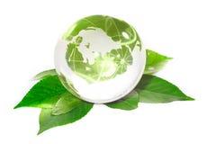 The globe concept eco. Closeup Stock Image