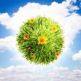 Globe d'herbe et de fleur Images stock