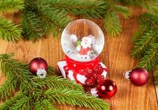 Globe de neige avec Santa pour Noël Photographie stock libre de droits