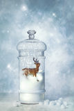 Globe de neige d'hiver Photographie stock