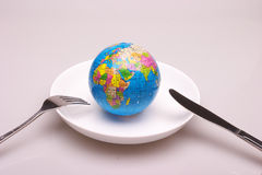 A globe in dish. A globe in a white dish,look like will be eaten Stock Image