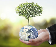 Globe ,earth in human hand, hand holding our planet earth glowin Stock Images