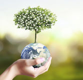 Globe ,earth in human hand, hand holding our planet earth glowin Stock Photos