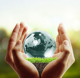Globe ,earth in human hand Royalty Free Stock Images