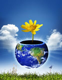 Globe environment. The earth as a container or pot for a yellow flower with a butterfly and grass beneath the container. Concept for environmentally friendly stock photo